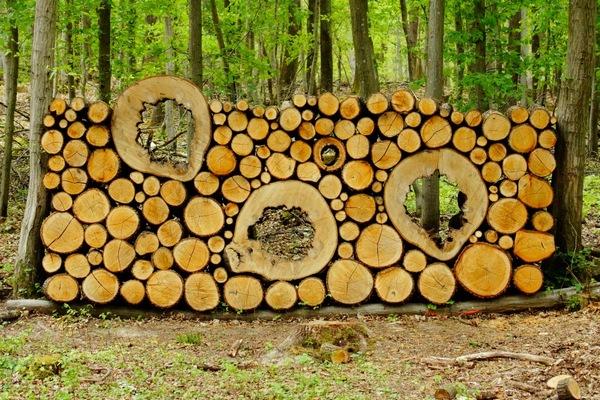рисунки из дров